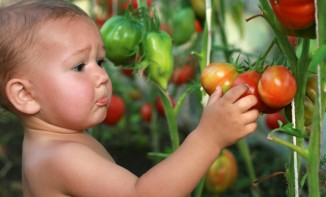 Baby and tomato